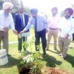Gulzar Group of Institutes Khanna Ludhiana organized plantation drive at its campus copy.resized