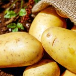 potatoes-farming